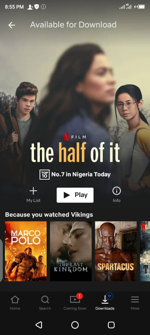 How to download Netflix Videos to your phone storage